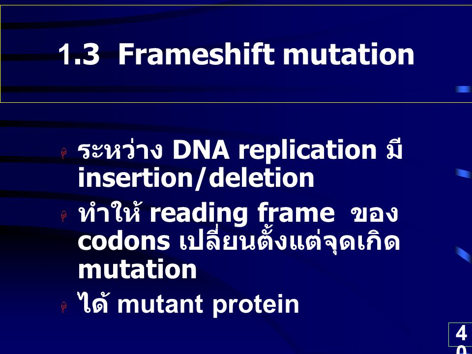 1.3 Frameshift mutation ระหว่าง DNA replication มี insertion/deletion