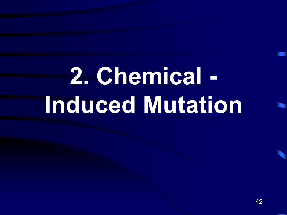 2. Chemical - Induced Mutation