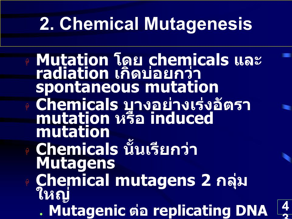 2. Chemical Mutagenesis Mutation โดย chemicals และ radiation เกิดบ่อยกว่า spontaneous mutation.