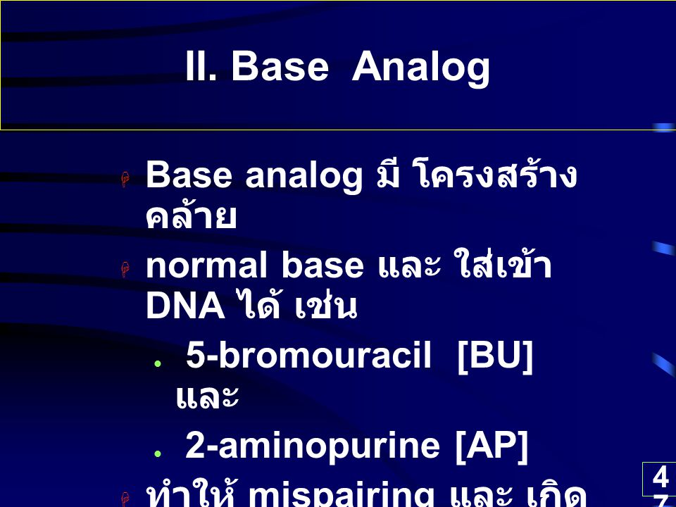 II. Base Analog Base analog มี โครงสร้างคล้าย