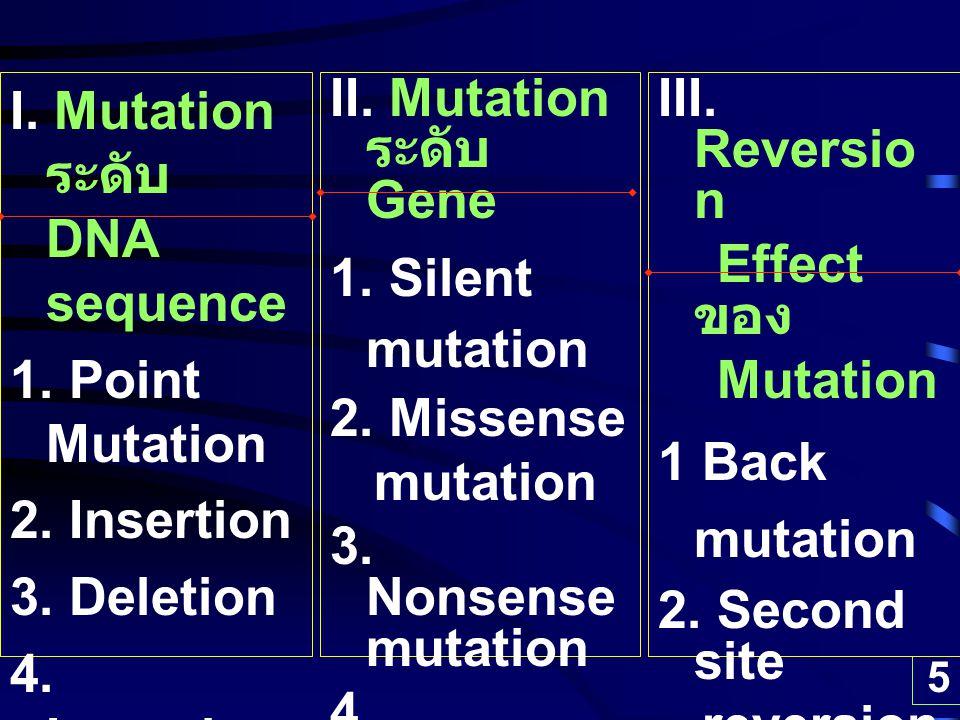 I. Mutation ระดับ DNA sequence