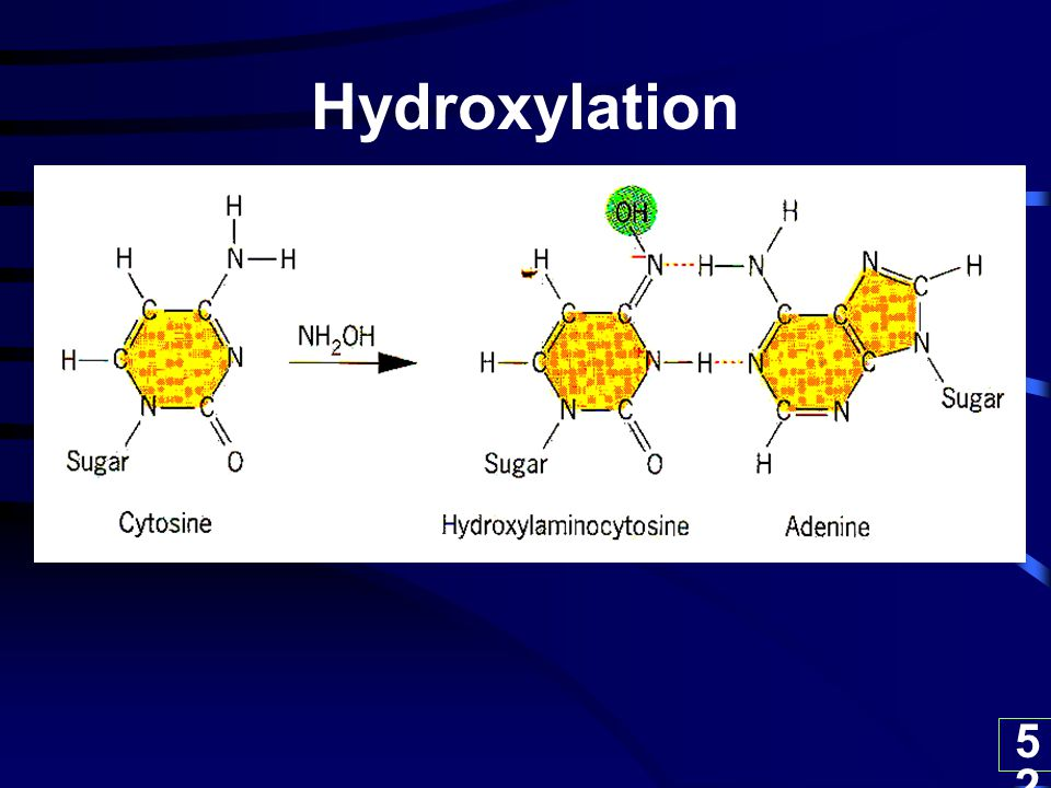 Hydroxylation