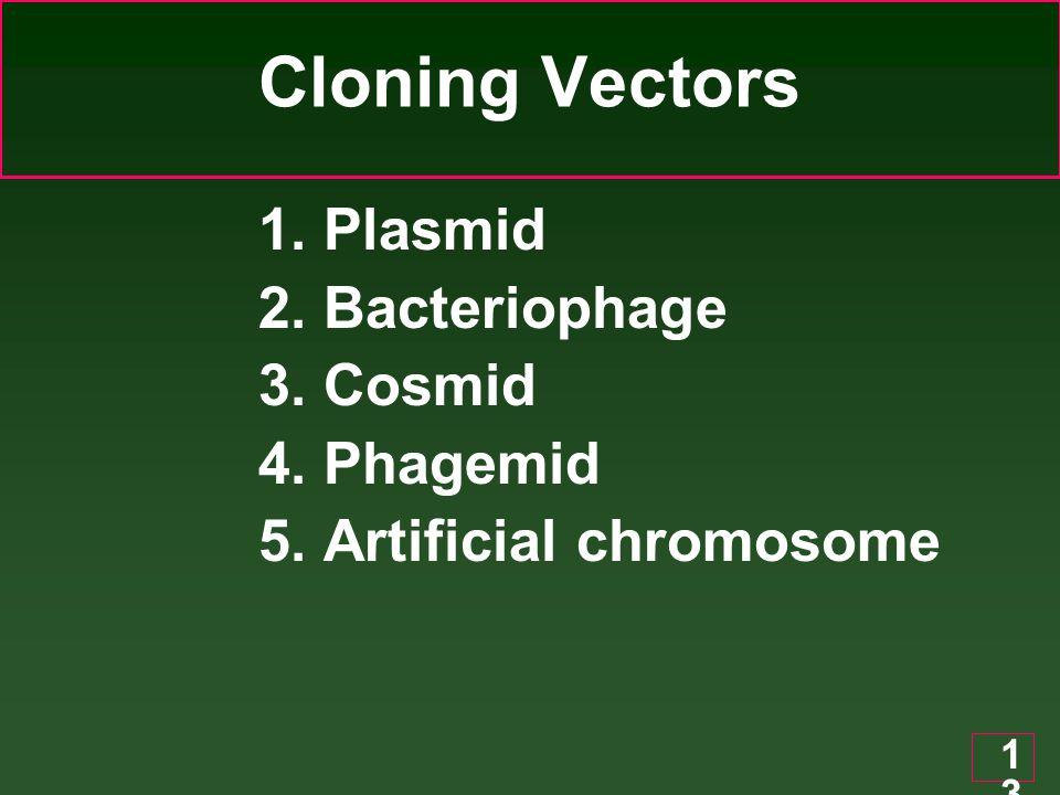 Cloning Vectors 1. Plasmid 2. Bacteriophage 3. Cosmid 4. Phagemid