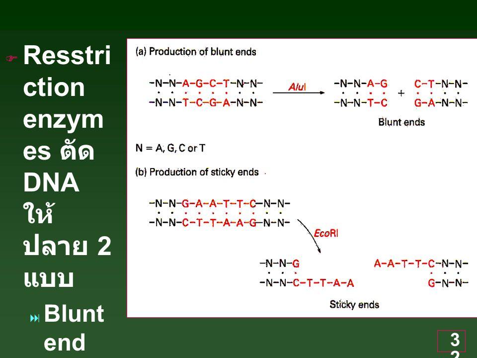 Resstriction enzymes ตัด DNA ให้ปลาย 2 แบบ