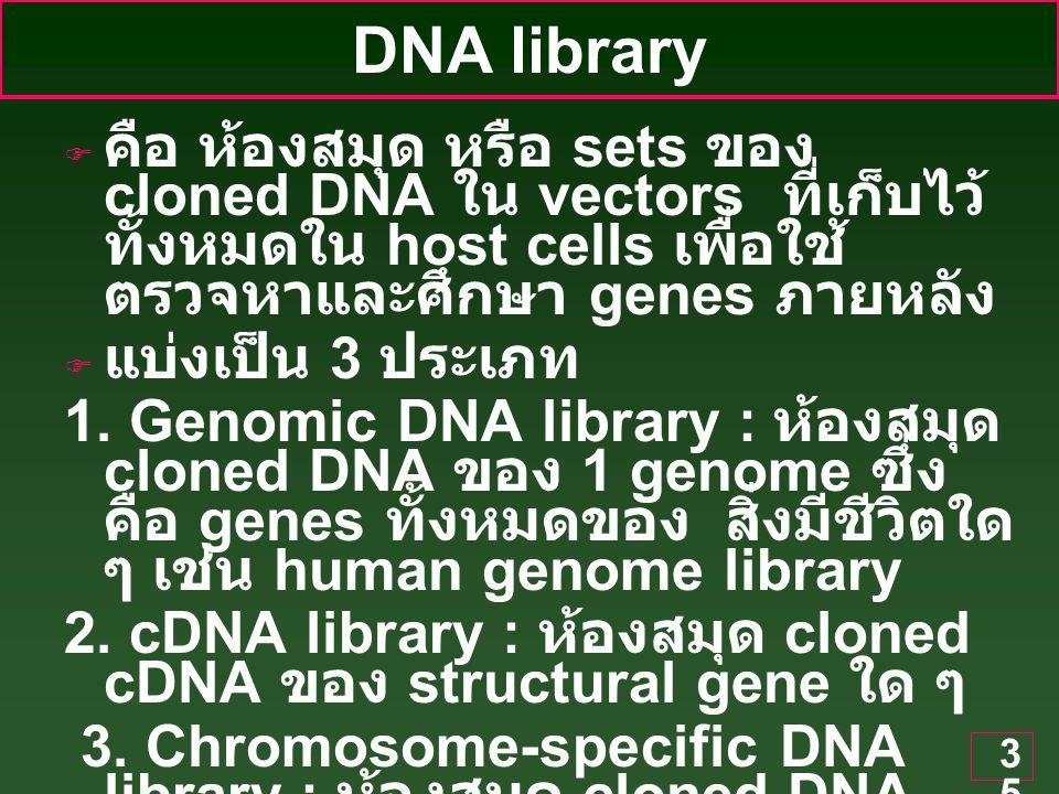 DNA library คือ ห้องสมุด หรือ sets ของ cloned DNA ใน vectors ที่เก็บไว้ทั้งหมดใน host cells เพื่อใช้ตรวจหาและศึกษา genes ภายหลัง.