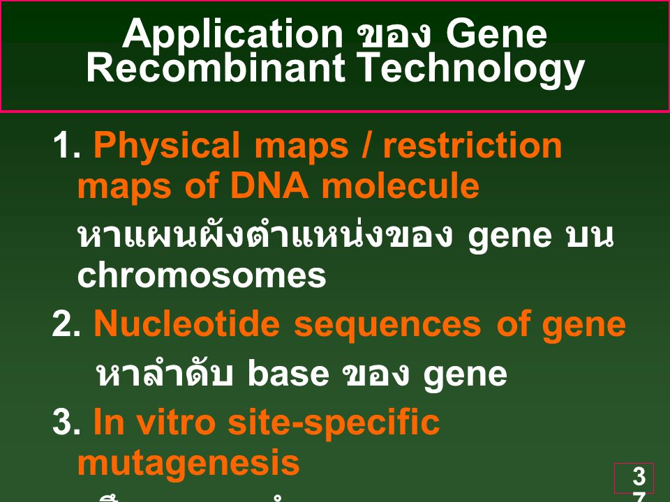 Application ของ Gene Recombinant Technology