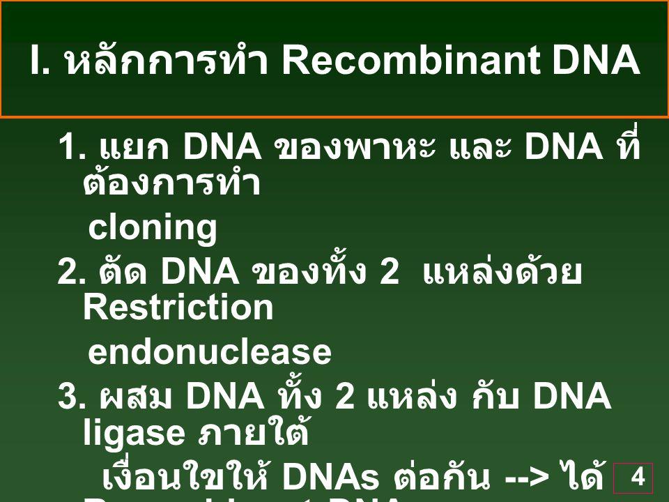I. หลักการทำ Recombinant DNA