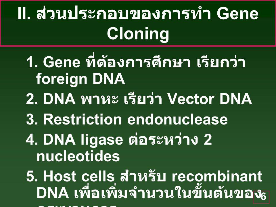 II. ส่วนประกอบของการทำ Gene Cloning