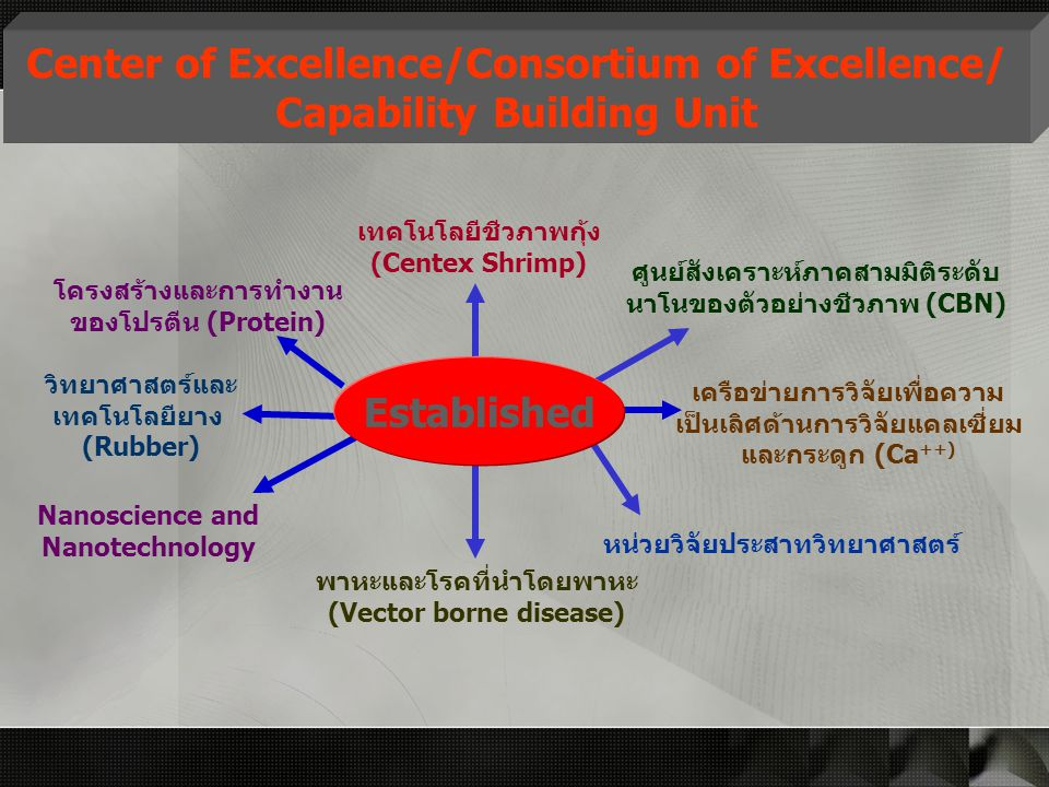 Center of Excellence/Consortium of Excellence/