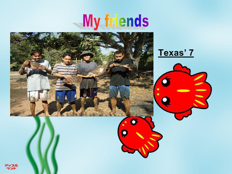My friends Texas' 7