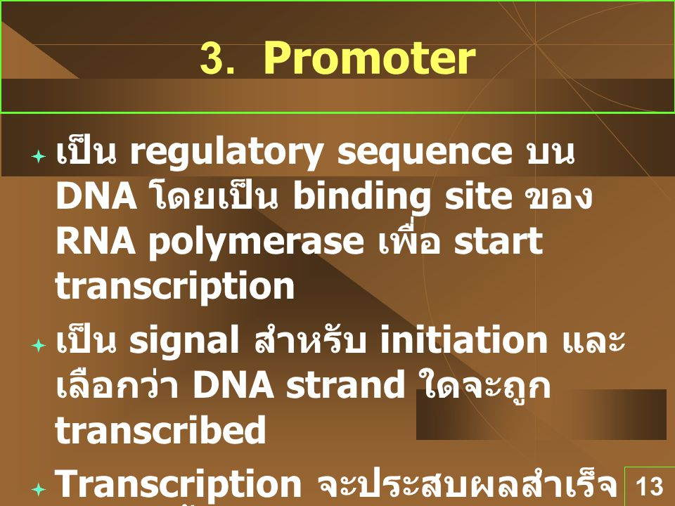 3. Promoter เป็น regulatory sequence บน DNA โดยเป็น binding site ของ RNA polymerase เพื่อ start transcription.
