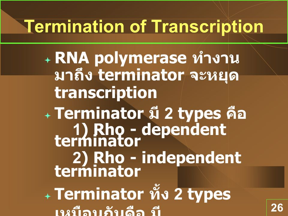 Termination of Transcription