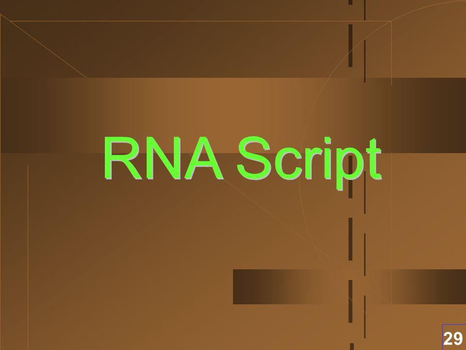 RNA Script