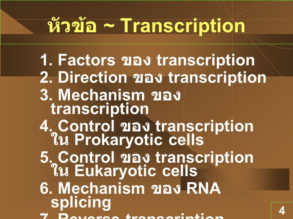 หัวข้อ ~ Transcription