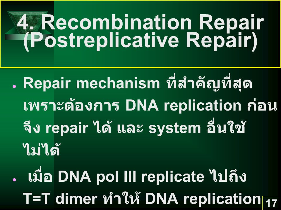 4. Recombination Repair (Postreplicative Repair)