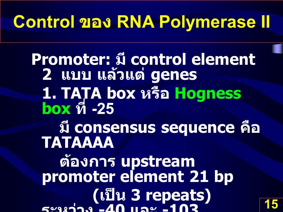 Control ของ RNA Polymerase II