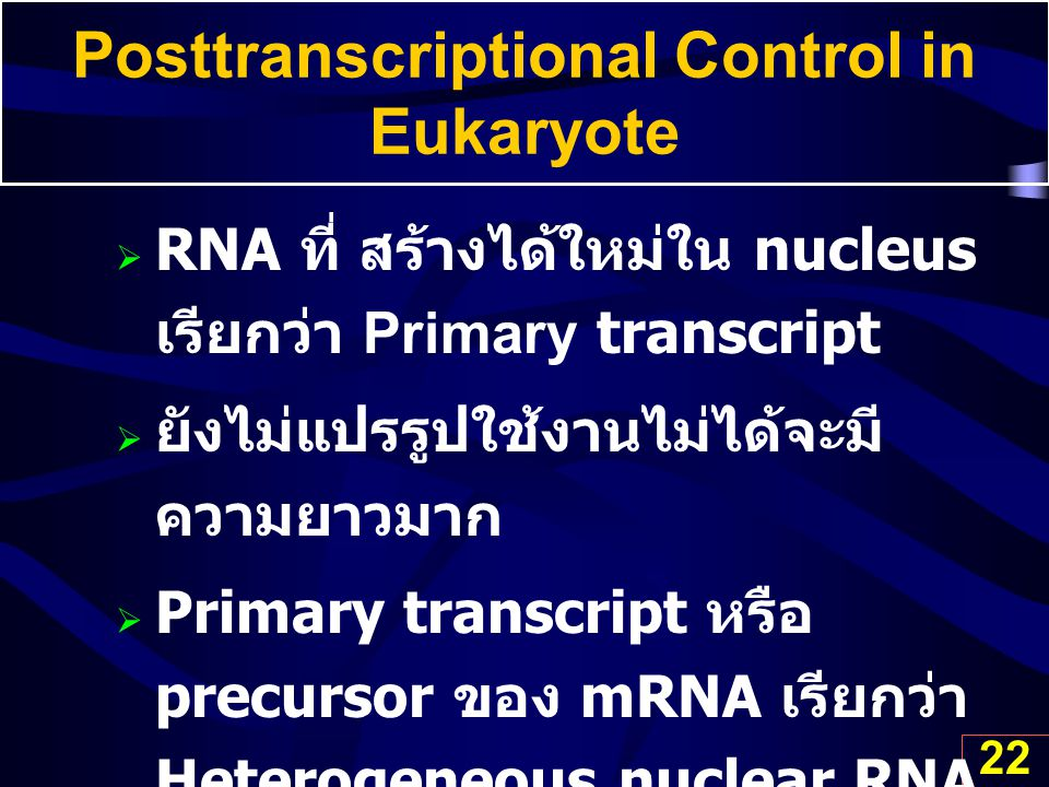 Posttranscriptional Control in Eukaryote