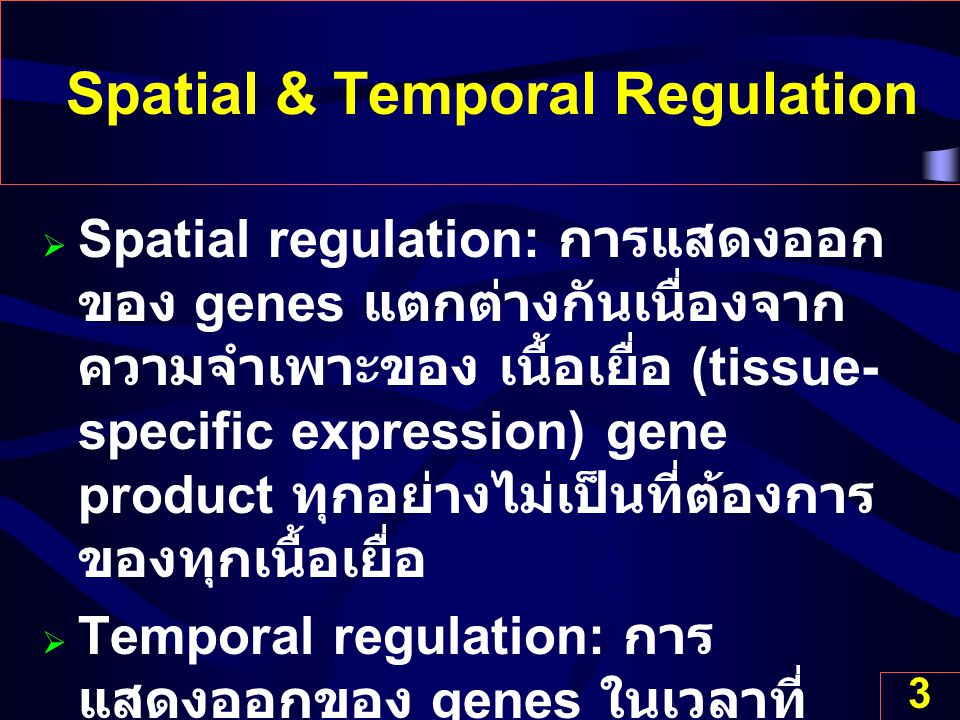 Spatial & Temporal Regulation