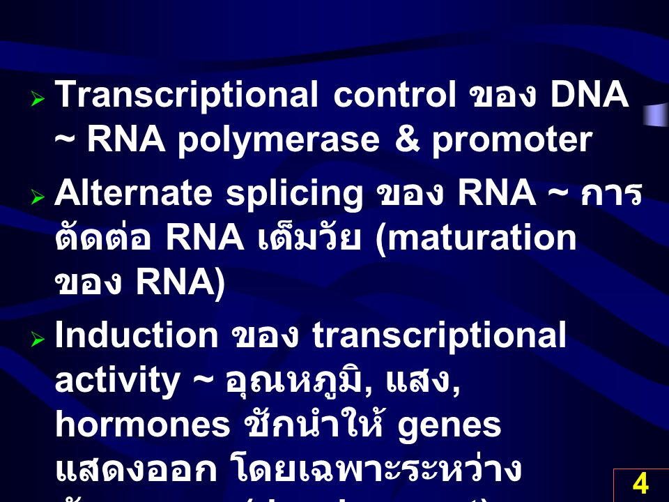 Transcriptional control ของ DNA ~ RNA polymerase & promoter