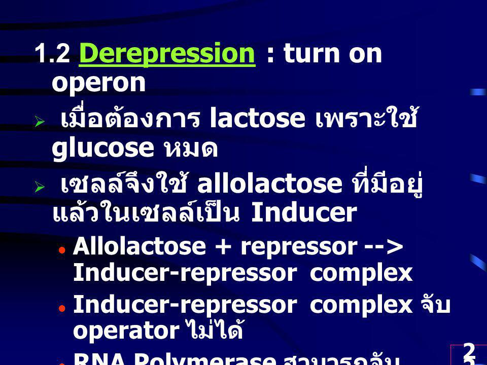 1.2 Derepression : turn on operon