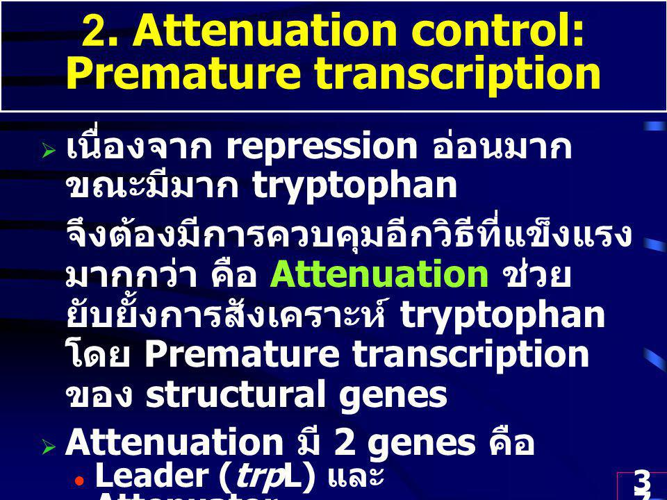 2. Attenuation control: Premature transcription