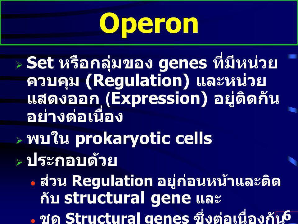 Operon Set หรือกลุ่มของ genes ที่มีหน่วยควบคุม (Regulation) และหน่วยแสดงออก (Expression) อยู่ติดกันอย่างต่อเนื่อง.