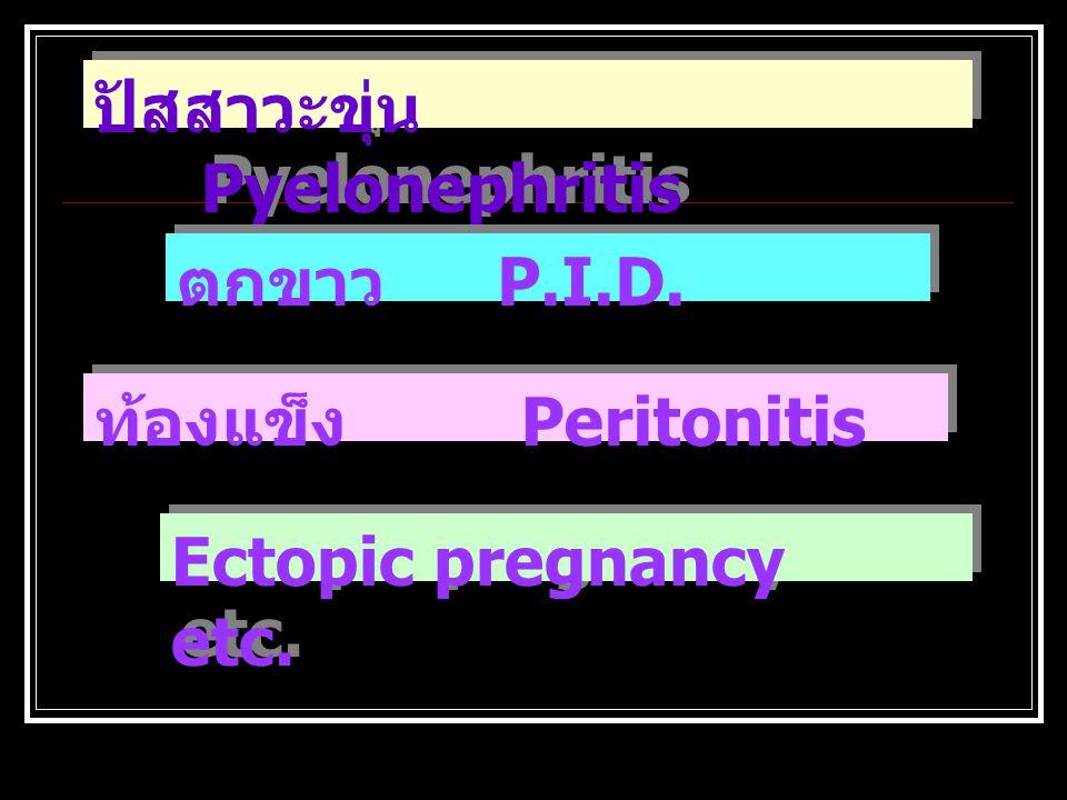 ปัสสาวะขุ่น Pyelonephritis