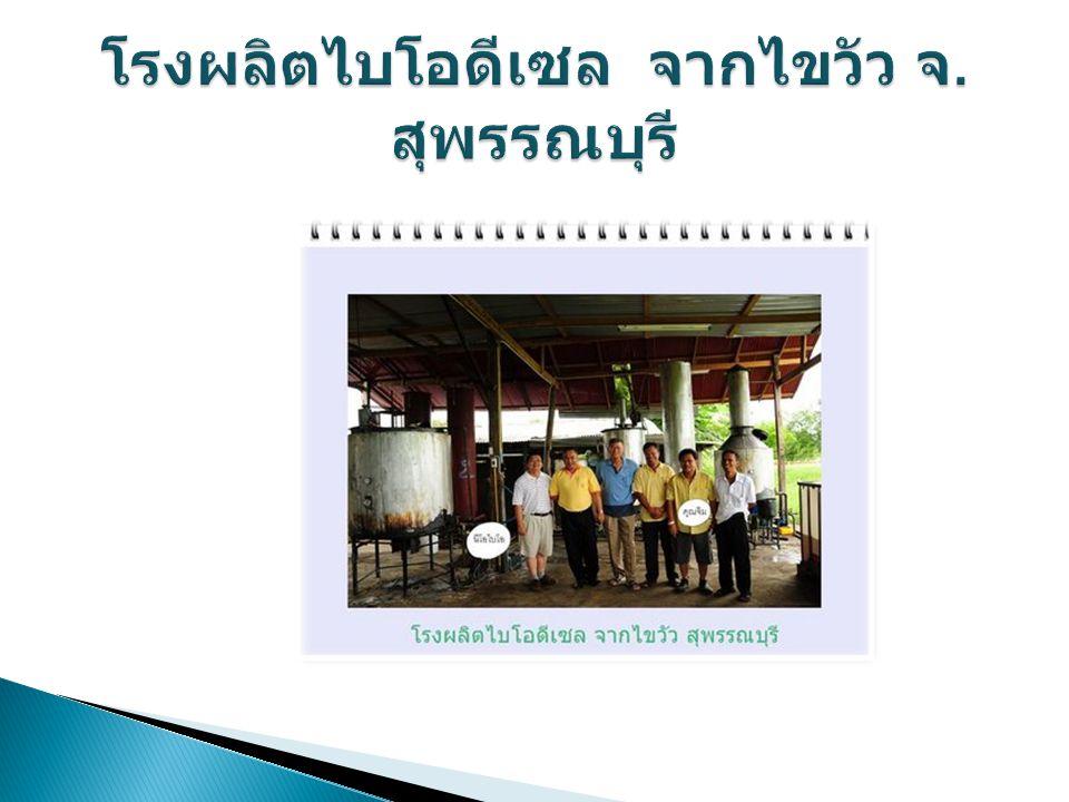 โรงผลิตไบโอดีเซล จากไขวัว จ. สุพรรณบุรี