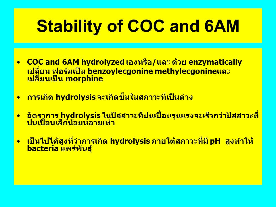 Stability of COC and 6AM COC and 6AM hydrolyzed เองหรือ/และ ด้วย enzymatically.