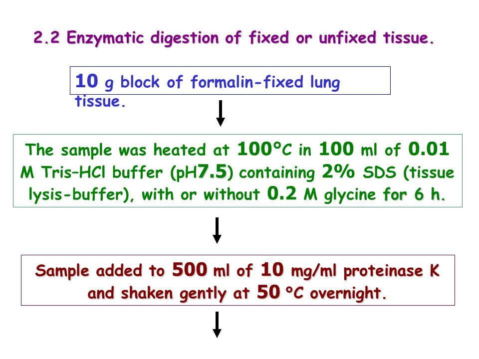 10 g block of formalin-fixed lung tissue.