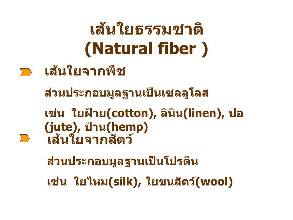 เส้นใยธรรมชาติ (Natural fiber )
