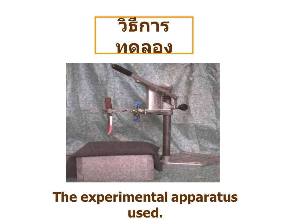 The experimental apparatus used.