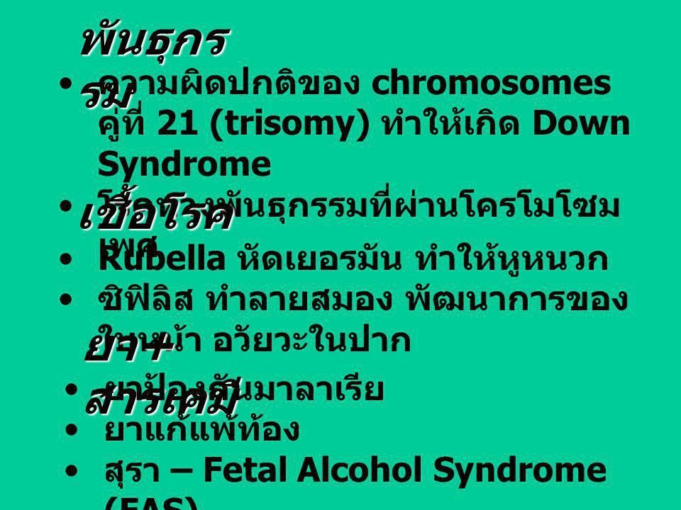 พันธุกรรม เชื้อโรค ยา+สารเคมี