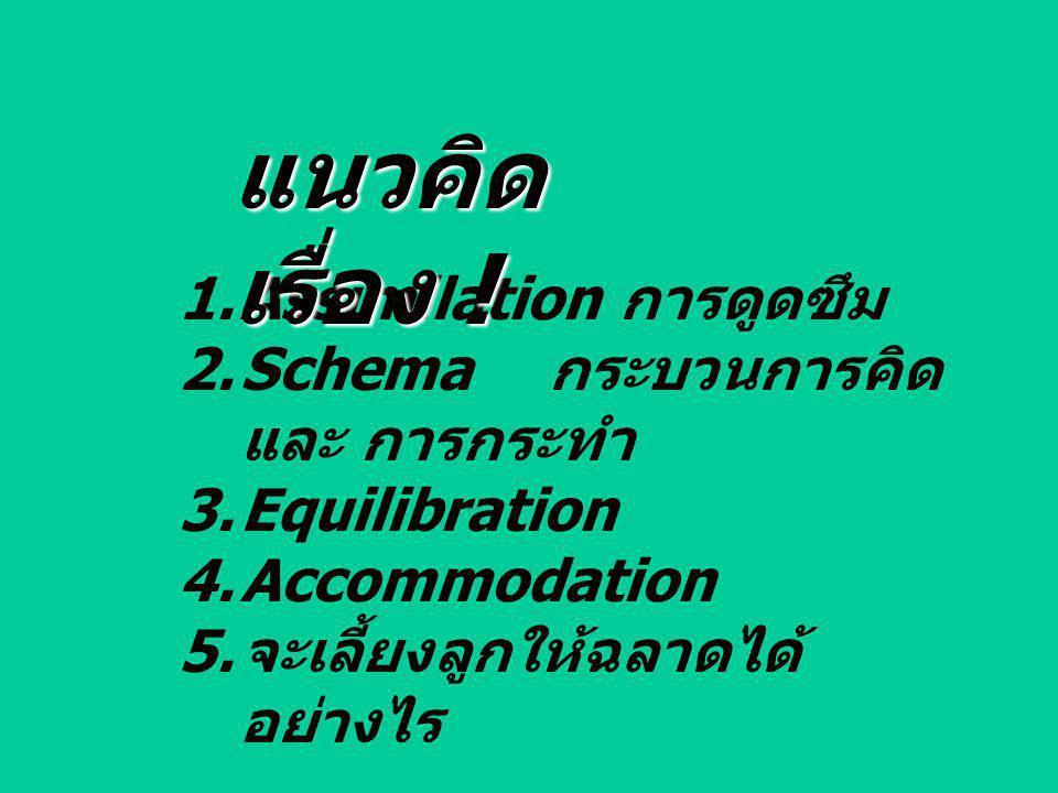 แนวคิดเรื่อง ! Assimilation การดูดซึม Schema กระบวนการคิดและ การกระทำ