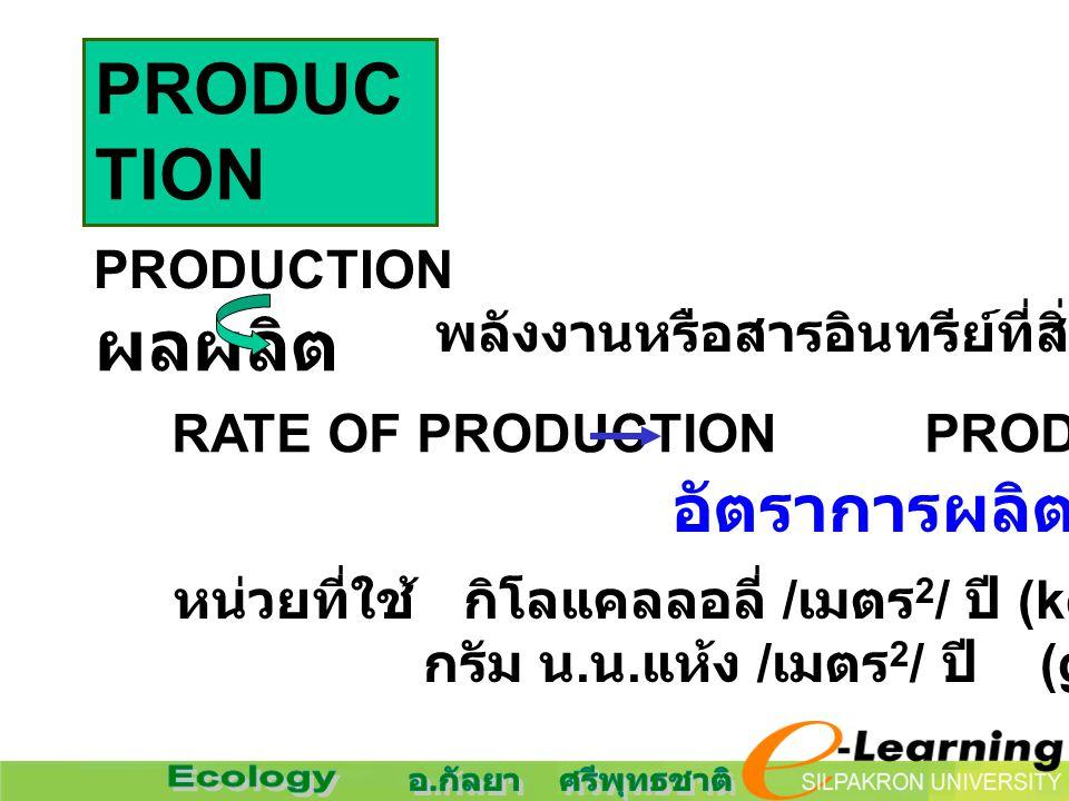 PRODUCTION ผลผลิต อัตราการผลิต PRODUCTION