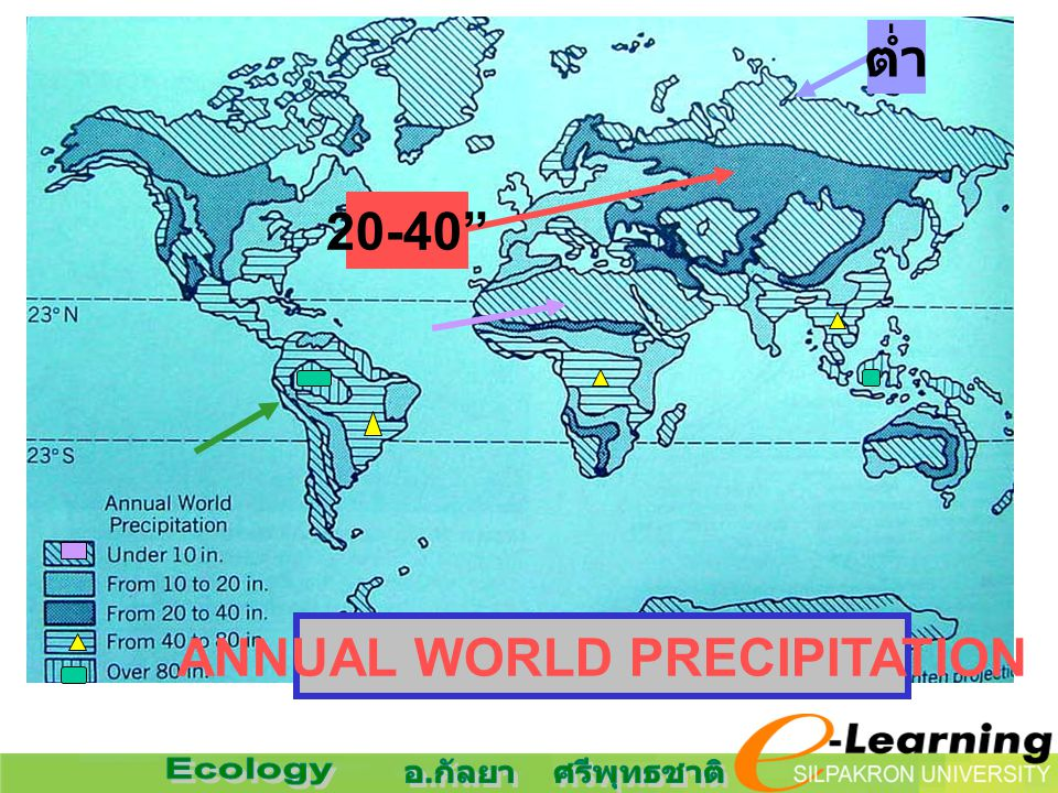 ANNUAL WORLD PRECIPITATION