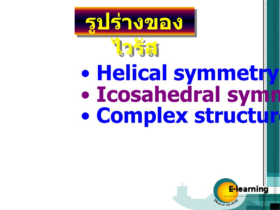 รูปร่างของไวรัส Helical symmetry Icosahedral symmetry Complex structure