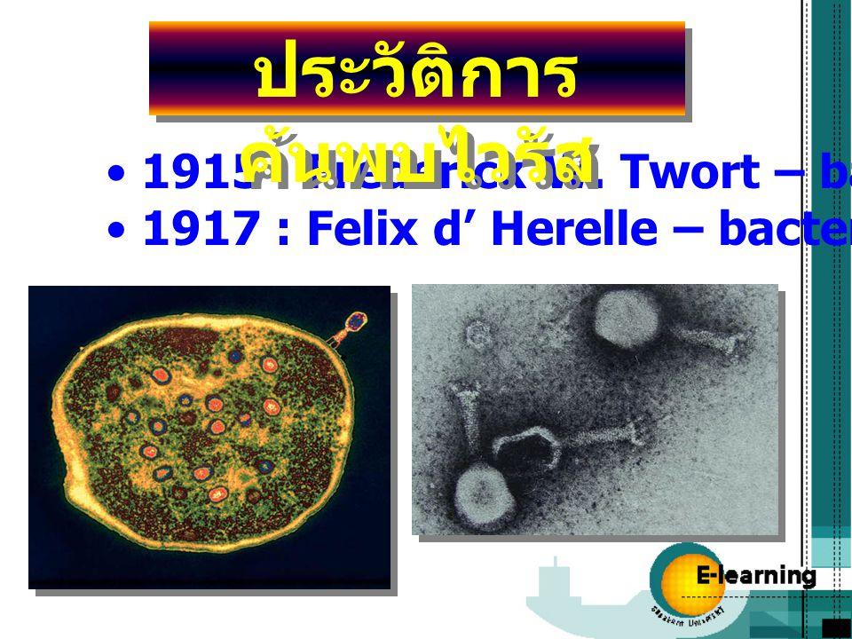 ประวัติการค้นพบไวรัส