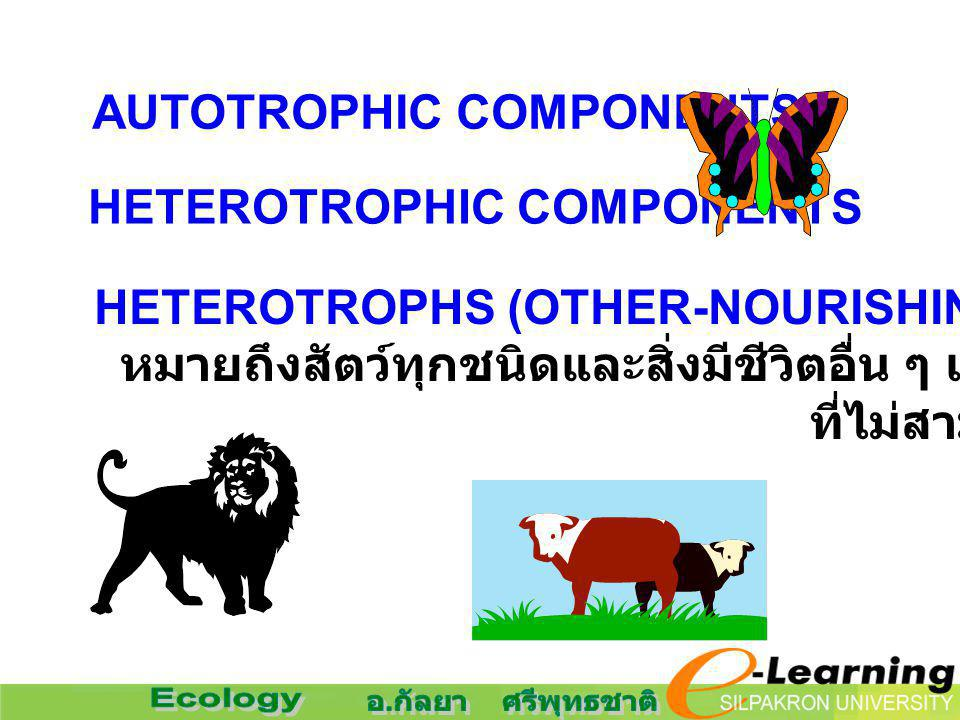 AUTOTROPHIC COMPONENTS
