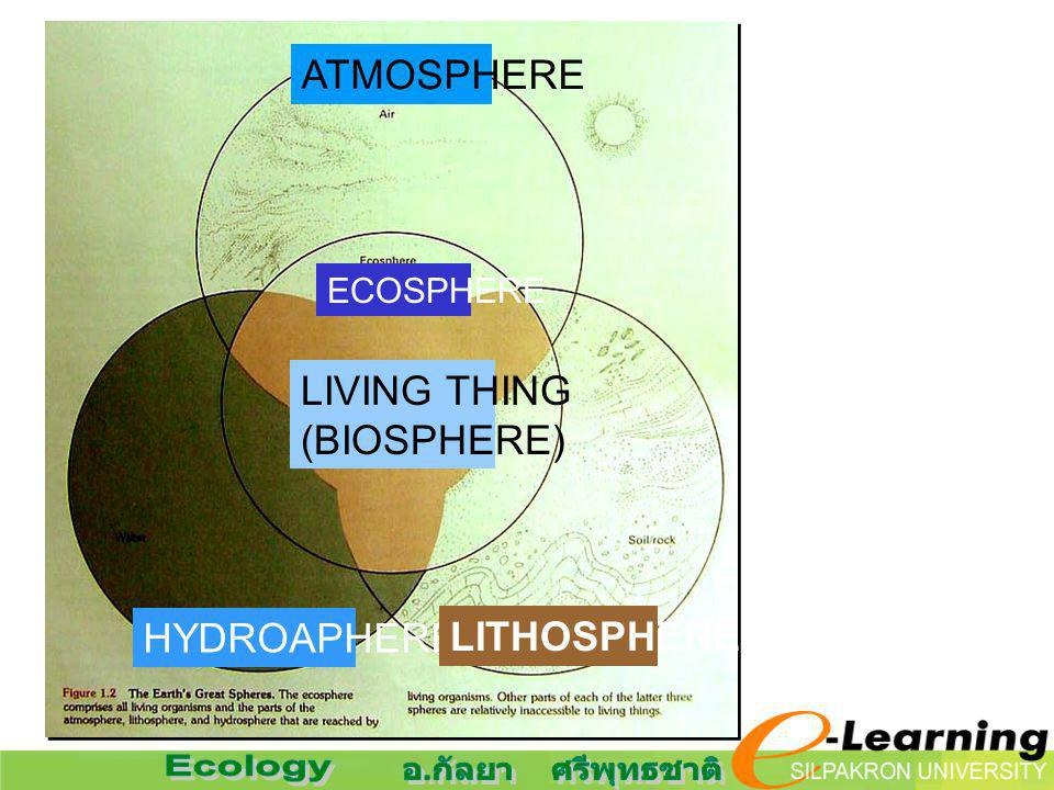 ATMOSPHERE ECOSPHERE LIVING THING (BIOSPHERE) HYDROAPHERE LITHOSPHERE