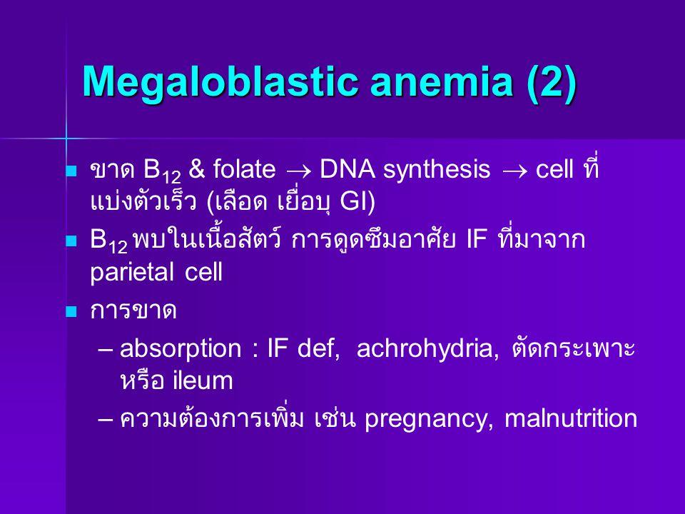Megaloblastic anemia (2)