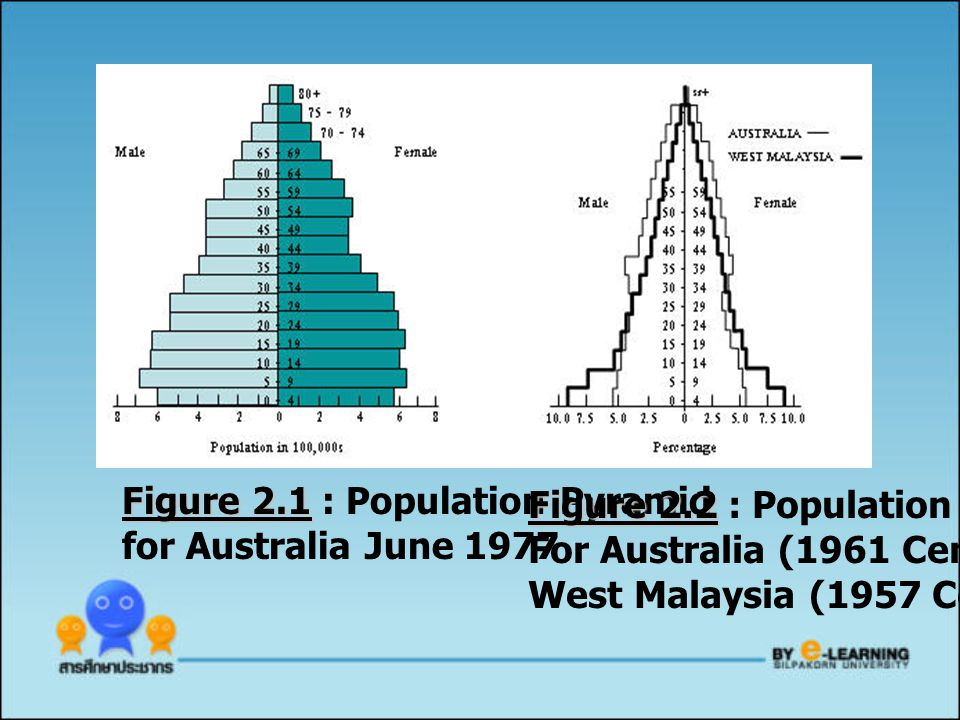 Figure 2.1 : Population Pyramid