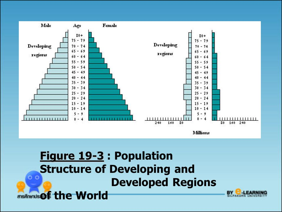 Figure 19-3 : Population Structure of Developing and