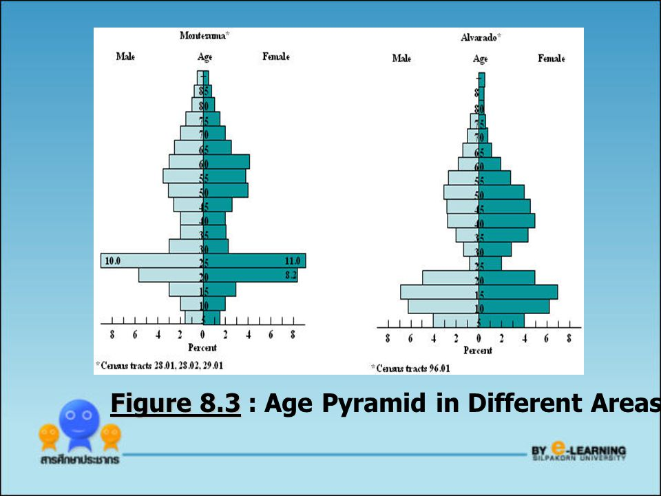 Figure 8.3 : Age Pyramid in Different Areas of San Diego (1970)