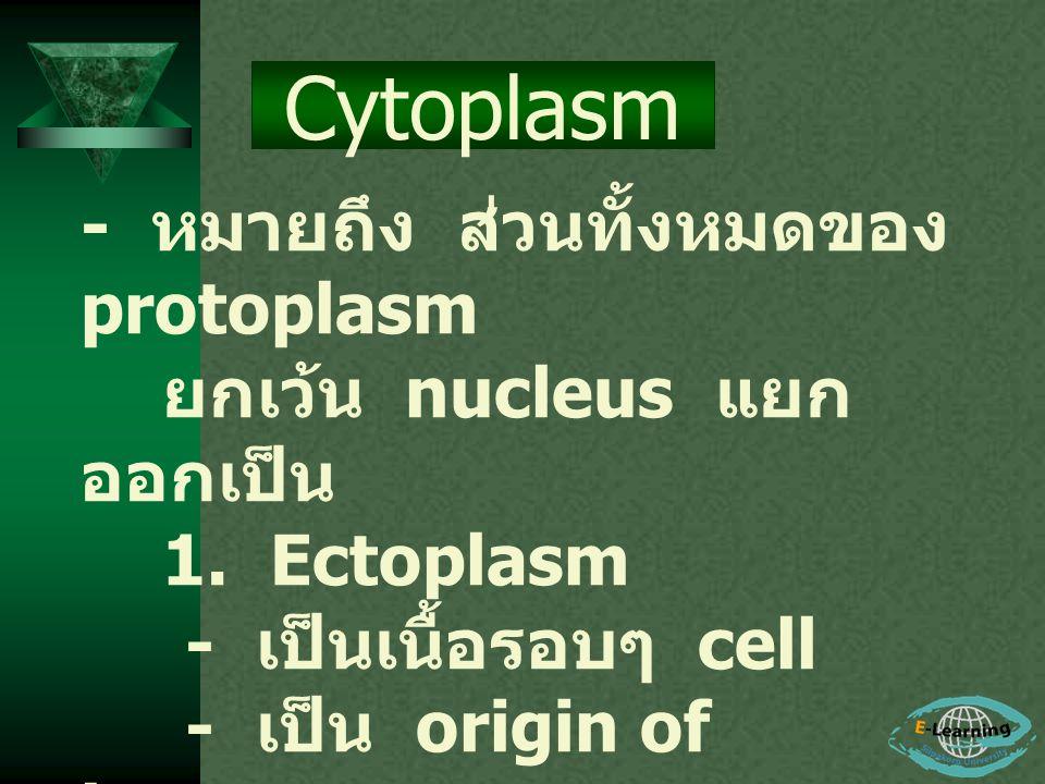 Cytoplasm - หมายถึง ส่วนทั้งหมดของ protoplasm