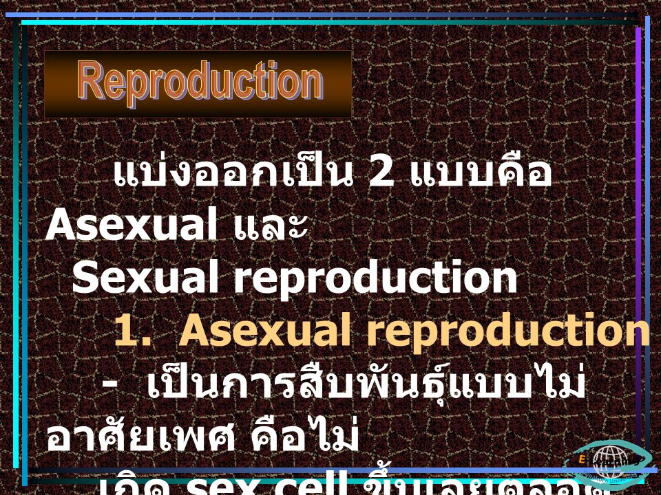 แบ่งออกเป็น 2 แบบคือ Asexual และ