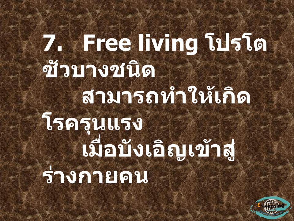 7. Free living โปรโตซัวบางชนิด