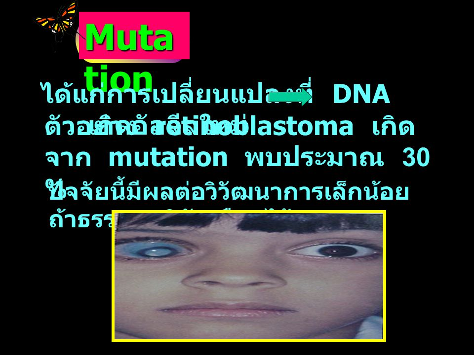 Mutation ได้แก่การเปลี่ยนแปลงที่ DNA เกิดอัลลีลใหม่