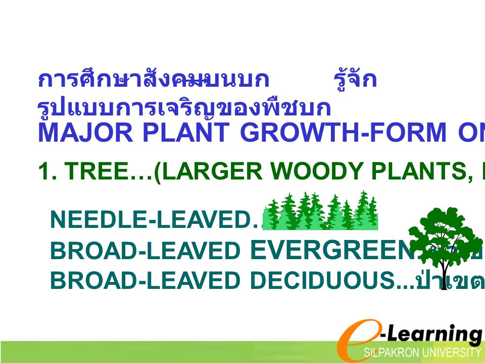 MAJOR PLANT GROWTH-FORM ON LAND