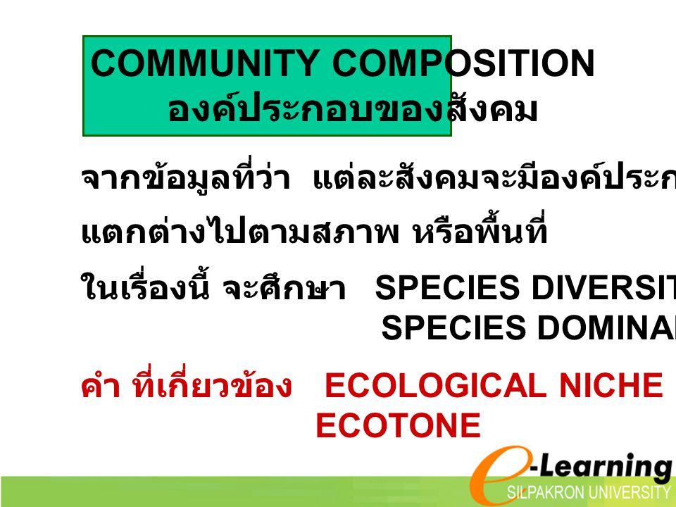 COMMUNITY COMPOSITION องค์ประกอบของสังคม